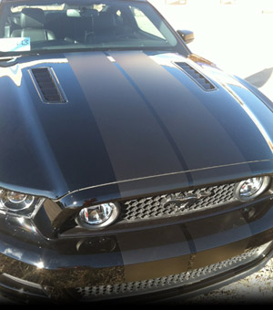 Mustang Rally Stripes
